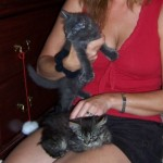 Bojangles with New Mom